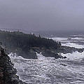 Raging Fury At Quoddy by Marty Saccone