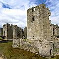 Raglan Castle - 3 by Paul Cannon