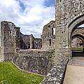 Raglan Castle - 6 by Paul Cannon
