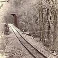 Rail Bridge In The Woods  by HW Kateley