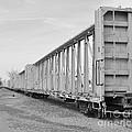 Rail Cars by Derry Murphy