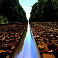 Rail Line by Shannon Louder