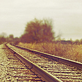 Rail by Margie Hurwich