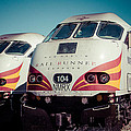Rail Runner Twins by Steven Bateson