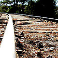 Rail by Shawn MacMeekin