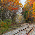 Rail Through The Colors by David T Wilkinson