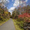 Rail Trail by Jonathan Welch