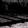 Railing Shadow by Expressionistart studio Priscilla Batzell