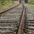 Railroad Bridge by Fran Gallogly