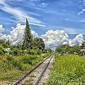 Railroad Track by Sophie McAulay