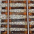 Railroad Track With Gravel 2 by Reid Callaway