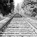 Railroad Tracks by Athena Mckinzie