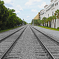 Railroad Tracks by Carlos Diaz