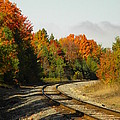 Railroad Tracks by Jan Ennis