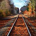 Rails by Tricia Marchlik