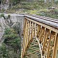 Railway Bridge by Robert Hamm