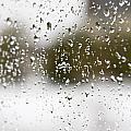 Rain by Alexey Stiop