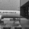 Rain Drops In Tokyo by Miguel Winterpacht