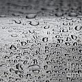 Rain Drops On Stainless Steel by Dale Powell