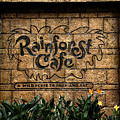 Rain Forest Cafe Signage Downtown Disneyland 01 by Thomas Woolworth