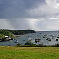 Rain Mackerel Cove by Donnie Freeman