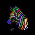 Rainbow by Anthony Mwangi