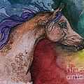 Rainbow Arabian by Angel Ciesniarska