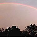 Rainbow Arch Display by Gail Matthews