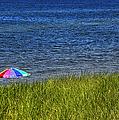 Rainbow Beach Umbrella by Thomas Woolworth