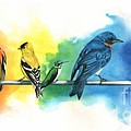 Rainbow Birds by Do'an Prajna - Antony Galbraith