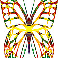 Rainbow Butterfly Abstract Nature Artwork by Omaste Witkowski