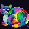Rainbow Calico by Nick Gustafson