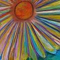 Rainbow Daisies by Jon Kittleson