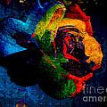 Rainbow Ecstasy by Kasia Bitner