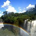 Rainbow by Helena Wierzbicki