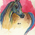 Rainbow Horse 2013 11 17 by Angel Ciesniarska