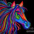Rainbow Horse Head by Nick Gustafson