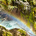 Rainbow In Avalanche Creek Canyon In Glacier National Park-montana by Ruth Hager
