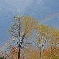 Rainbow In Spring by Sonali Gangane