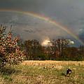 Rainbow by Jane Galik