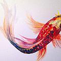 Rainbow Koi by Lauren Heller