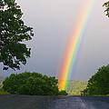 Rainbow by Mark Greenberg