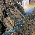 Rainbow On The Lower Falls by Sandra Bronstein