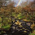 Rainbow River by Darren Galpin