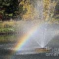 Rainbow Splash by Ann Horn