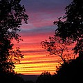 Rainbow Sunset by Laura Corebello