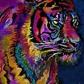 Rainbow Tiger Variant by Alixandra Mullins