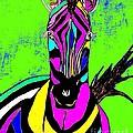 Rainbow Zebra 2 Abstract by Saundra Myles