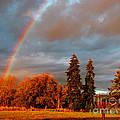 Rainbow's End At Rainbow Falls by Ron  Tackett