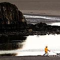 Raincoat Dog Walk by John Daly